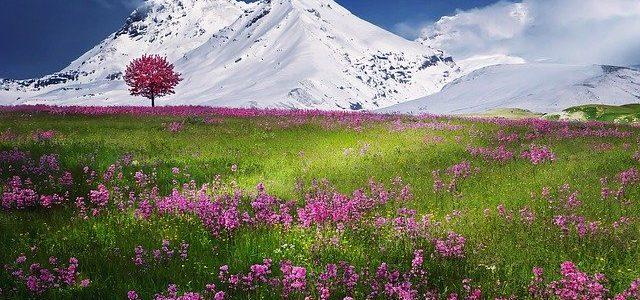 les Alpes paysage ski